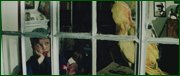 http//images.vfl.ru/ii/1597235544/20e35a53/31322925.jpg