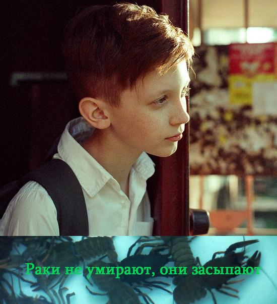 http//images.vfl.ru/ii/15974676/a42151b4/31347550.jpg