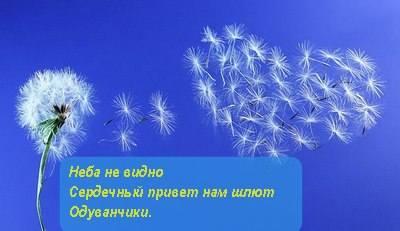 http://images.vfl.ru/ii/1597642919/b9f0d23f/31364229_m.jpg