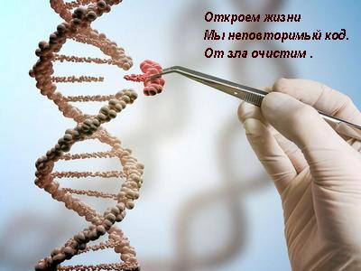 http://images.vfl.ru/ii/1598789845/354c1e2e/31490811_m.jpg
