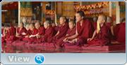 http//images.vfl.ru/ii/1599650329/8e244cf5/31584697.png