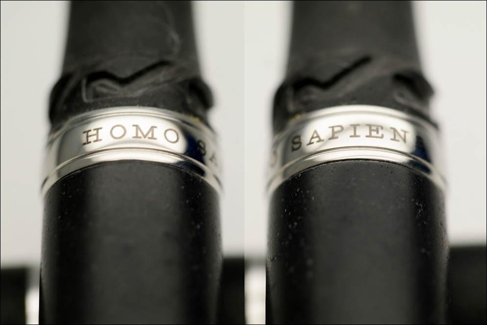 Visconti Homo Sapiens Oversize Vs-591-99F. Lenskiy.org