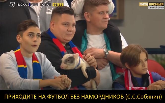 http://images.vfl.ru/ii/1600097342/cf976d9c/31631246.jpg