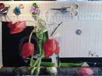 http://images.vfl.ru/ii/1600596948/70b56cbe/31687568_s.jpg