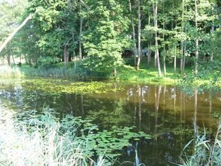http://images.vfl.ru/ii/1601281269/8ca010e2/31767588_m.jpg