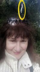 http://images.vfl.ru/ii/1601877481/0b8c2a01/31833021_m.jpg