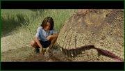 http//images.vfl.ru/ii/1603288568/018b2ed9/32011995.jpg