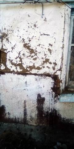 http://images.vfl.ru/ii/1604141292/248b72e2/32138449_m.jpg