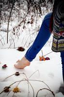 http://images.vfl.ru/ii/1606554436/53ecfbd8/32468321_s.jpg