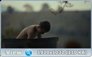 http//images.vfl.ru/ii/1607518981/f7fba3a4/32604262.png