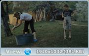 http//images.vfl.ru/ii/1607518989/8d7fb38f/32604266.png