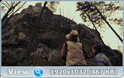 http//images.vfl.ru/ii/1607518995/12d4d093/32604277.png