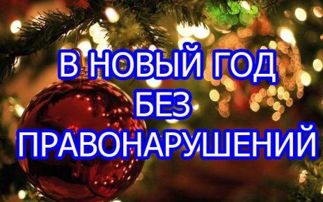 в новый год без правонарушений