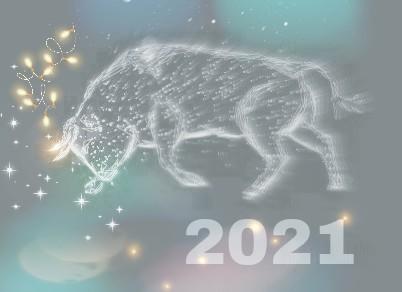 Белый Бык в Новый 2021 год, обработка GenuineLera