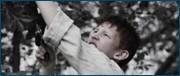http//images.vfl.ru/ii/1609938404/2f3694d3/32868924.jpg