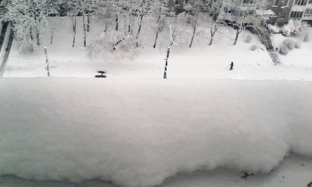 http://images.vfl.ru/ii/1610088709/f4250888/32882707_m.jpg