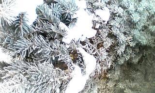 http://images.vfl.ru/ii/1611032358/ae1ac54a/33002542_m.jpg