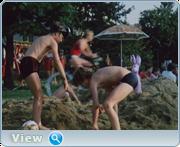 http//images.vfl.ru/ii/16114758/1643246b/33076630.png