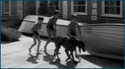 http//images.vfl.ru/ii/1613537194/4e51b9/33362886.jpg
