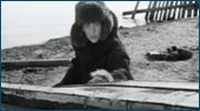 http//images.vfl.ru/ii/1613537213/81e3f78d/33362930.jpg