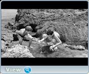 http//images.vfl.ru/ii/16135744/4efaf0db/33364609.png