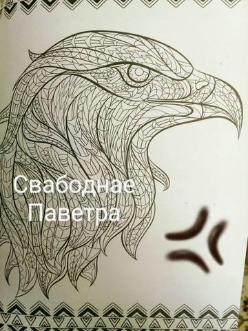 http://images.vfl.ru/ii/1613676296/44ff5f8c/33388878_m.jpg