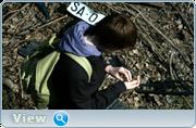 http//images.vfl.ru/ii/1614356027/c29bbcf7/332160.png
