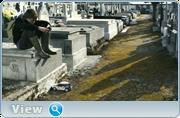 http//images.vfl.ru/ii/1614356027/e43e1507/332158.png