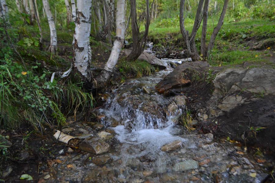http://images.vfl.ru/ii/1614513970/835bfedd/33503906_m.jpg