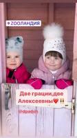 http://images.vfl.ru/ii/1615326637/774116cf/33616056_s.jpg