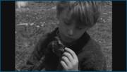 http//images.vfl.ru/ii/1617632791/bef655cb/339588.jpg