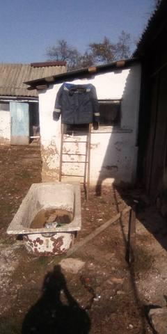 http://images.vfl.ru/ii/1617709555/0d330395/33968755_m.jpg