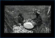 http//images.vfl.ru/ii/1617709889/2016a4fc/33968902.jpg