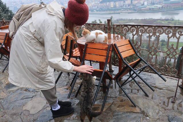 http://images.vfl.ru/ii/1617819601/1823a20b/33989226_m.jpg