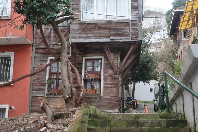 http://images.vfl.ru/ii/1617819850/a65580f0/33989304_m.jpg