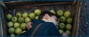 http//images.vfl.ru/ii/1618444135/bee74092/34085293.jpg