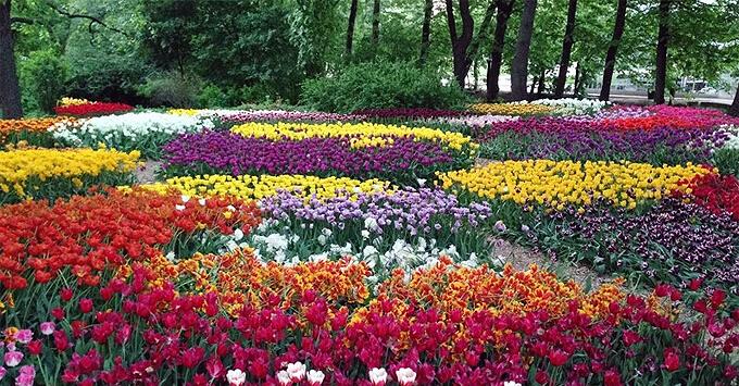 Радио Romantika приглашает на XX Весенний фестиваль цветов