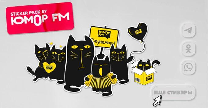 Кото-стикеры «Юмор FM» доступны в популярных мессенджерах и соцсетях - Новости радио OnAir.ru