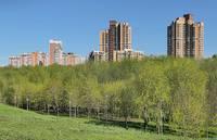 Долина р. Сетунь в мае (Госзаказник). Фото Морошкина В.В.