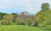 Парк Дворца молодёжи на Воробьёвых горах. Фото Морошкина В.В.