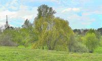 В парке Дворца молодёжи в мае. Фото Морошкина В.В.