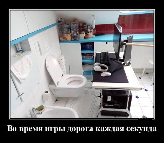 images.vfl.ru/ii/1622409412/0a6f1bef/34646264.jpg