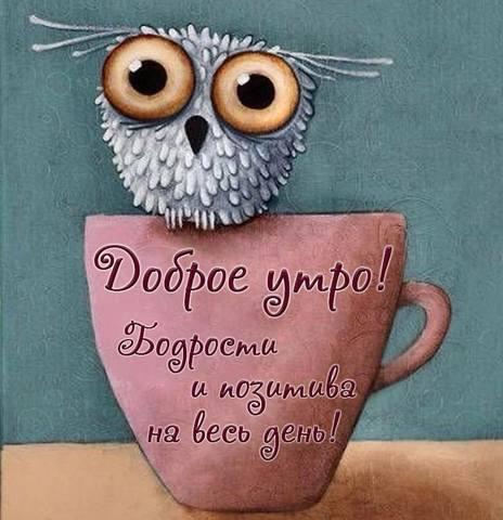 http://images.vfl.ru/ii/1623384987/935605d4/34790174_m.jpg