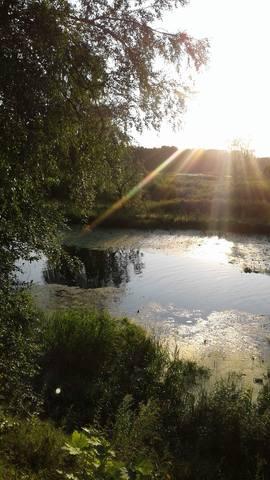 http://images.vfl.ru/ii/1627020588/b088d05c/35252781_m.jpg