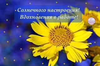 http://images.vfl.ru/ii/1629666332/6a310c14/35589298_m.jpg