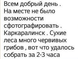 images.vfl.ru/ii/1630934509/b00c4f44/35755392_m.jpg