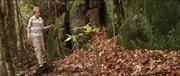 http//images.vfl.ru/ii/16315873/00dc34e4/35851071.jpg