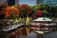 12Парк Хамарикю. Токио.