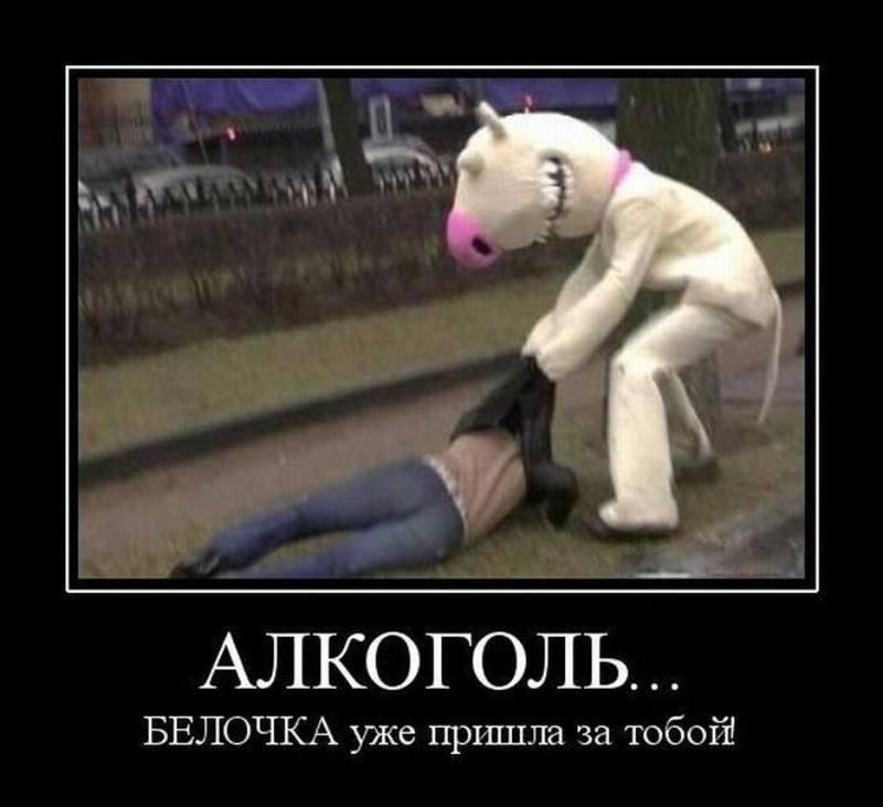 Онищенко учительская газета пивной алкоголизм