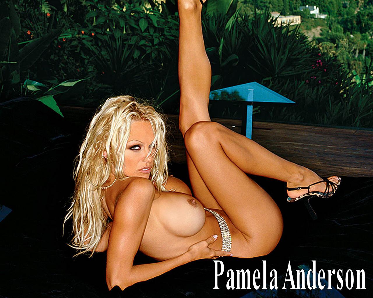 Порны памела андерсон секс 17 фотография